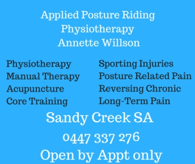 AppliedPostureRidingPhysiotherapy Annette Willson web