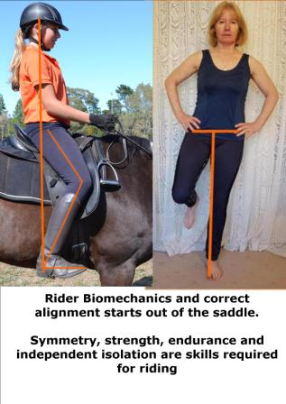 Rider Biomechanics 1websize